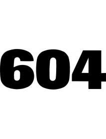 604_1