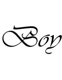 Boy_1