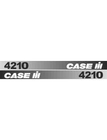 Case 4210