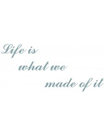 Life is what we..