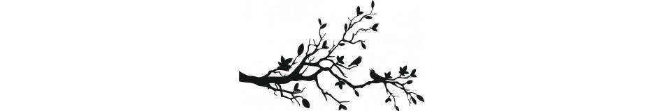 Puut ja kasvit